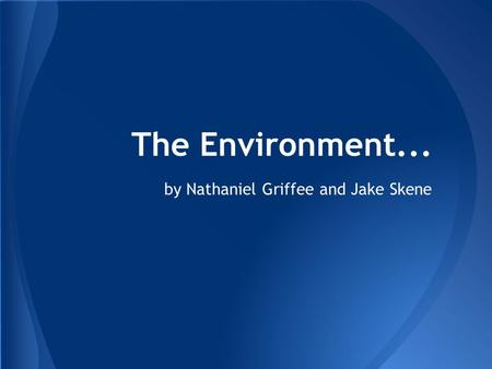 The Environment... by Nathaniel Griffee and Jake Skene.