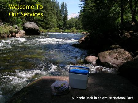 A Picnic Rock in Yosemite National Park Welcome To Our Services.