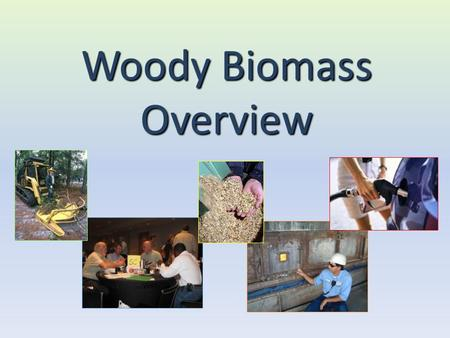 Woody Biomass Overview. Energy Demand Worldwide demand for fossil fuels projected to increase dramatically over the next 20 years Fossil fuel will come.