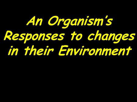An Organism's Responses to changes in their Environment.
