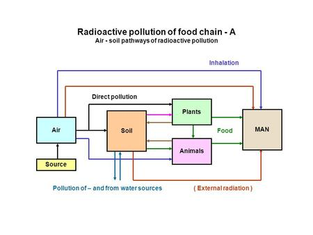 Radioactive pollution of food chain - Α Air - soil pathways of radioactive pollution Source Inhalation ( External radiation ) Direct pollution Food Air.