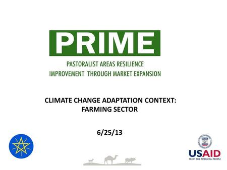 CLIMATE CHANGE ADAPTATION CONTEXT: FARMING SECTOR 6/25/13.