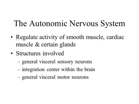 The Autonomic Nervous System Regulate activity of smooth muscle, cardiac muscle & certain glands Structures involved –general visceral sensory neurons.