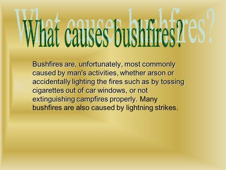 Bushfires are, unfortunately, most commonly caused by man's activities, whether arson or accidentally lighting the fires such as by tossing cigarettes.