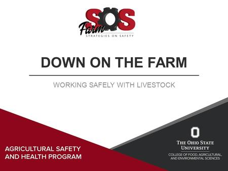 DOWN ON THE FARM WORKING SAFELY WITH LIVESTOCK. Learning Objectives Understand of the injuries related to livestock Recognize animal behavior traits and.