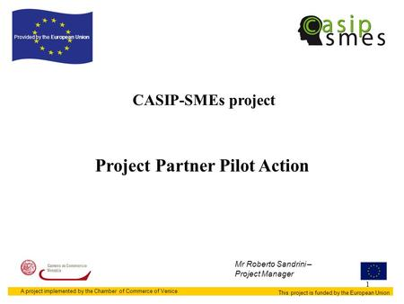 1 CASIP-SMEs project This project is funded by the European Union Provided by the European Union A project implemented by the Chamber of Commerce of Venice.
