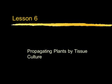 Lesson 6 Propagating Plants by Tissue Culture. Next Generation Science/Common Core Standards Addressed! zHS ‐ LS1 ‐ 1. Construct an explanation based.