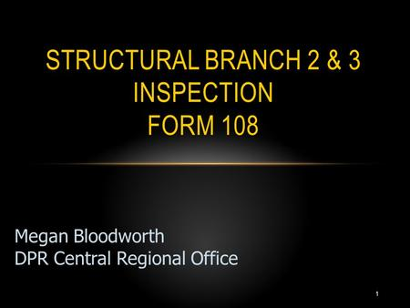 1 STRUCTURAL BRANCH 2 & 3 INSPECTION FORM 108 Megan Bloodworth DPR Central Regional Office.