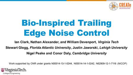 Bio-Inspired Trailing Edge Noise Control