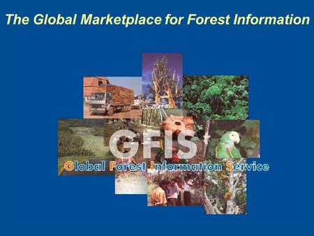 The Global Marketplace for Forest Information. Why should we create metadata? Users Information providers.