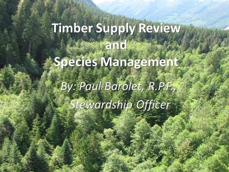 Timber Supply Review and Species Management By: Paul Barolet, R.P.F., Stewardship Officer Stewardship Officer.