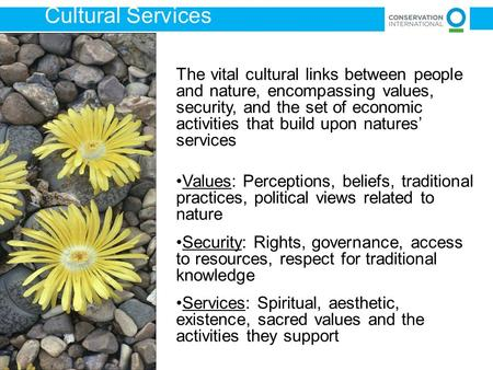 The vital cultural links between people and nature, encompassing values, security, and the set of economic activities that build upon natures' services.