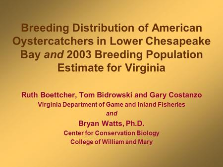 Breeding Distribution of American Oystercatchers in Lower Chesapeake Bay and 2003 Breeding Population Estimate for Virginia Ruth Boettcher, Tom Bidrowski.