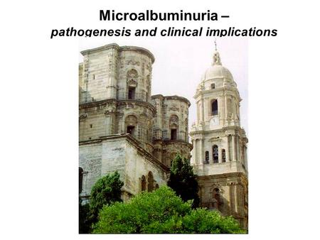 Microalbuminuria – pathogenesis and clinical implications.
