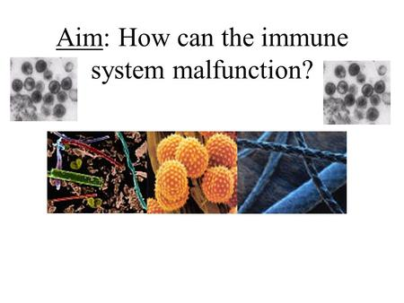 Aim: How can the immune system malfunction?. How can your immune system malfunction? 1.Allergies 2.Autoimmune Disease 3.HIV 4.Organ Transplants.