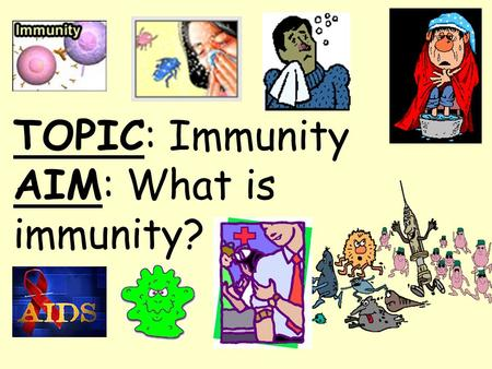 TOPIC: Immunity AIM: What is immunity?. Topic: Immunity Aim: How does the immune system fight disease? Do Now: How do antibodies help to protect the body?
