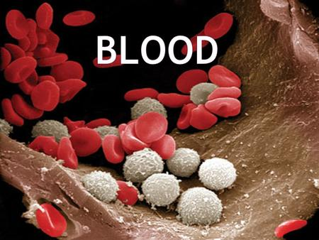  Consists of blood cells & plasma  Blood cells = Erythrocytes (RBC's), Leukocytes (WBC's), & Thrombocytes (Platelets)  Blood is 55% plasma & 45% blood.