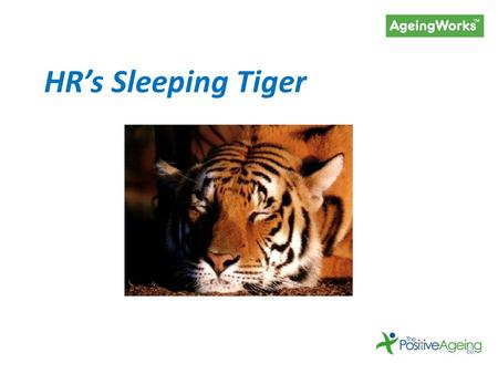 HR's Sleeping Tiger. The impact of our ageing society on your workforce (and bottom line)