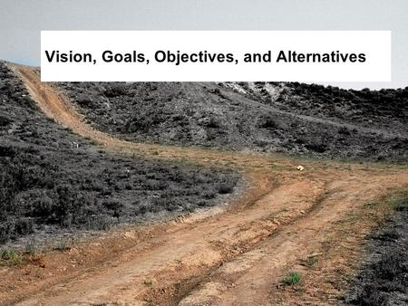 Vision, Goals, Objectives, and Alternatives. Objectives  Define vision, goals, objectives, and alternatives within the planning context.  Describe collaborator.