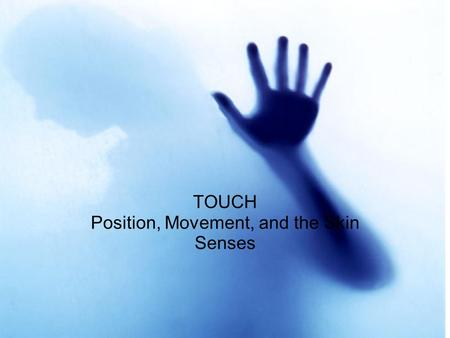 Touch TOUCH Position, Movement, and the Skin Senses.