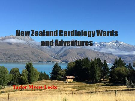 New Zealand Cardiology Wards and Adventures Taylor Myers Locke.