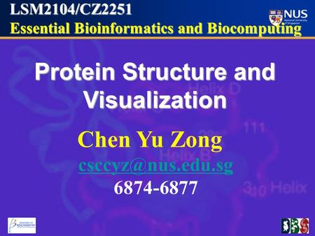 LSM2104/CZ2251 Essential Bioinformatics and Biocomputing Essential Bioinformatics and Biocomputing Protein Structure and Visualization Chen Yu Zong