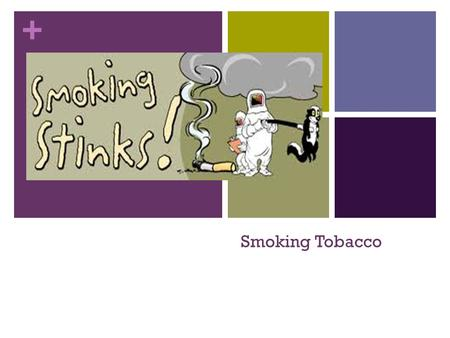 + Smoking Tobacco. + Facts: There are around 4000 chemicals in tobacco, and out of the 100 identified poisons, 63 are known to cause cancer Nicotine is.