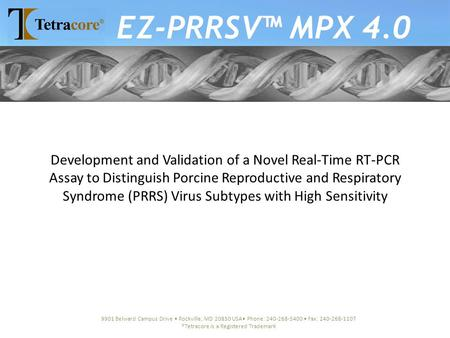 Development and Validation of a Novel Real-Time RT-PCR Assay to Distinguish Porcine Reproductive and Respiratory Syndrome (PRRS) Virus Subtypes with High.