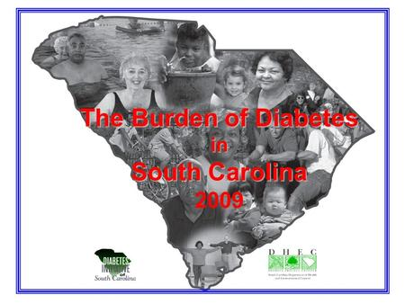 The Burden of Diabetes in South Carolina 2009. Chapter 1. Demographics and Access to Health Care.