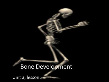 Bone Development Unit 3, lesson 3. Bone Development OSTEOGENESIS (a.k.a. ossification) is the process of bone tissue formation. In embryos this leads.