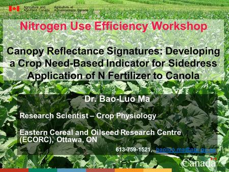 Nitrogen Use Efficiency Workshop Canopy Reflectance Signatures: Developing a Crop Need-Based Indicator for Sidedress Application of N Fertilizer to Canola.