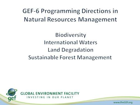 Biodiversity Land Degradation Climate Change Chemicals International Waters Sustainable Forest Management Sustainable Cities Food Security Fisheries Forests.