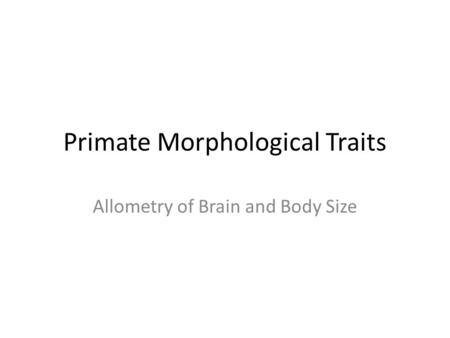 Primate Morphological Traits Allometry of Brain and Body Size.