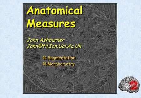 Anatomical Measures John Ashburner zSegmentation zMorphometry zSegmentation zMorphometry.