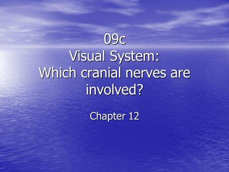 09c Visual System: Which cranial nerves are involved? Chapter 12.