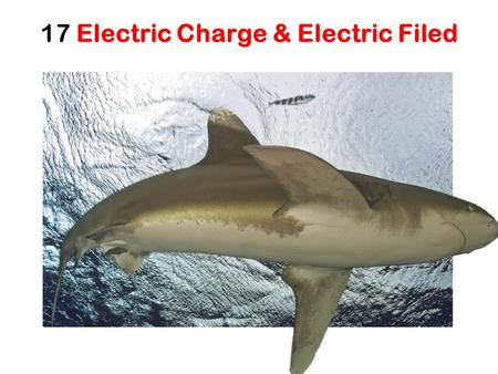 17 Electric Charge & Electric Filed. Nature of Electric Charge Two types of Charges: Positive and negative charges Like charges repel each other (force?)