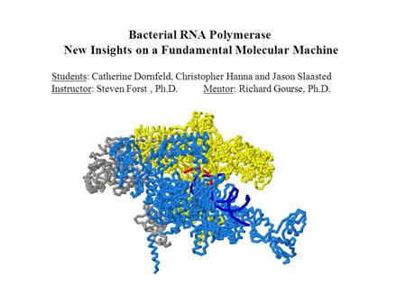 Bacterial RNA Polymerase New Insights on a Fundamental Molecular Machine Students: Catherine Dornfeld, Christopher Hanna and Jason Slaasted Instructor: