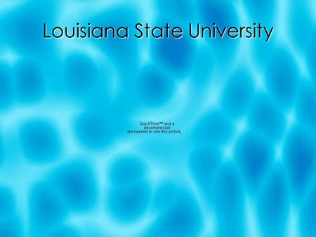 Louisiana State University. Fast Facts:  Mascot: Fighting Tigers  Purple and Gold  Number of students: 25, 000  Time: 1 day, 12 hours (2, 224 miles)