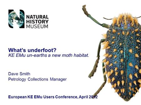Dave Smith Petrology Collections Manager European KE EMu Users Conference, April 2012 What's underfoot? KE EMu un-earths a new moth habitat.