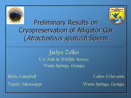 Preliminary Results on Cryopreservation of Alligator Gar (Atractosteus spatula) Sperm Jaclyn Zelko U.S. Fish & Wildlife Service Warm Springs, Georgia Ricky.