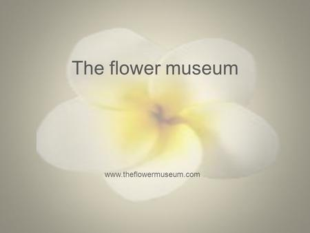 The flower museum www.theflowermuseum.com. The flower museum Target audience of the group: The target audience of the flower museum ranges from 10 years.
