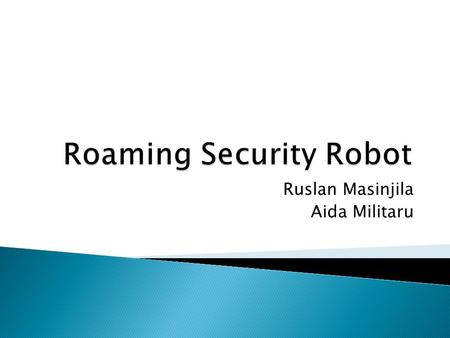 Ruslan Masinjila Aida Militaru.  Nature of the Problem  Our Solution: The Roaming Security Robot  Functionalities  General System View  System Design.