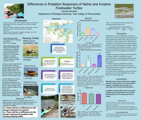Differences in Predation Responses of Native and Invasive Freshwater Turtles Victoria Kentner Department of Biological Sciences, York College of Pennsylvania.
