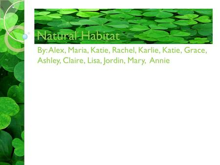 Natural Habitat By: Alex, Maria, Katie, Rachel, Karlie, Katie, Grace, Ashley, Claire, Lisa, Jordin, Mary, Annie.