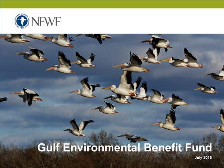 CONFIDENTIAL Gulf Environmental Benefit Fund July 2015.