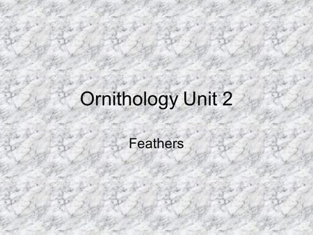 Ornithology Unit 2 Feathers. Feathers are unique structures made of a protein called keratin' The keratin is different from that found in the scales of.