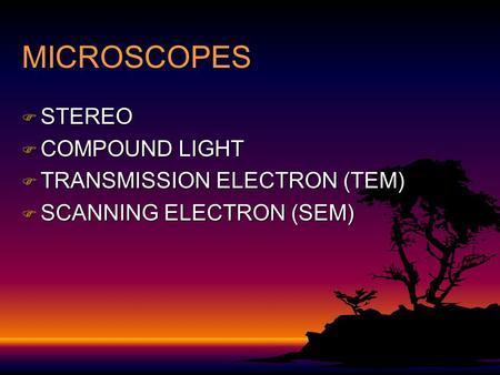 MICROSCOPES F STEREO F COMPOUND LIGHT F TRANSMISSION ELECTRON (TEM) F SCANNING ELECTRON (SEM)