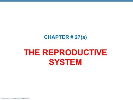 Copyright © 2010 Pearson Education, Inc. THE REPRODUCTIVE SYSTEM CHAPTER # 27(a)