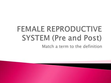 FEMALE REPRODUCTIVE SYSTEM (Pre and Post)