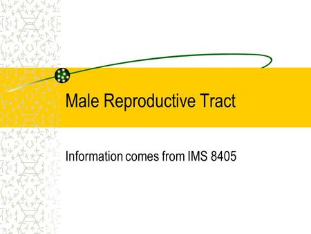 Male Reproductive Tract Information comes from IMS 8405.